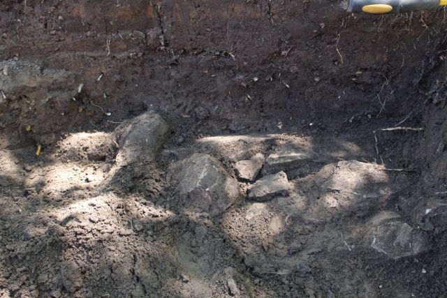 On day seven, a major find was made, the foundation to a building, maybe the summer kitchen.