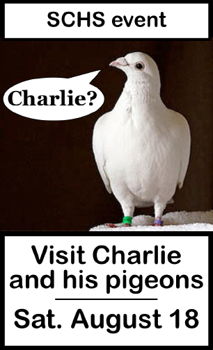 Visit Charlie and his pigeons Sat. August 18