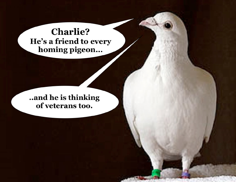 Speech bubbles added to photo from: https://www.asianscientist.com/2012/04/in-the-lab/homing-pigeons-magnetic-fields-macrophages-2012/