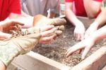 The dig at Sappington House - For students